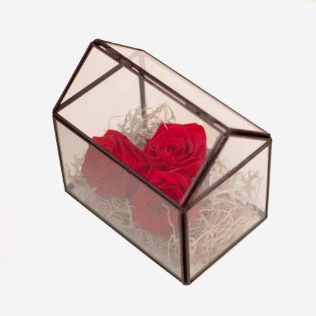 Casa trandafirilor criogenati
