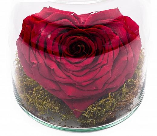 Vas Sticla Trandafir Criogenat Rosu Inima