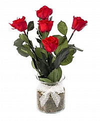5 Trandafiri Criogenati Rosii in vas de sticla 2