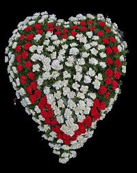 Coroana funerara din garoafe in forma de inima 2