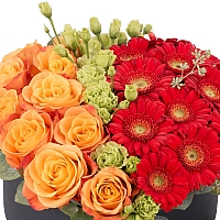 Aranjament de 10 Trandafiri, Portocalii, Portocaliu, Gerbera, Roșii, Roșu, Roșie, Lisianthus, Verde 3