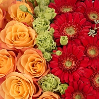 Aranjament de 10 Trandafiri, Portocalii, Portocaliu, Gerbera, Roșii, Roșu, Roșie, Lisianthus, Verde 4