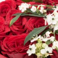 Aranjament de 13, Trandafiri, Roșii, Roșu, Roșie, 2, Ornitogalum, 1, Euphorbia, Albă, Cutie, Rotundă 4