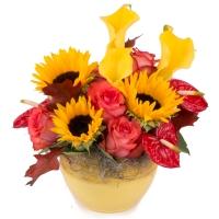 Aranjament de Floarea soarelui, Cale, Cală, Galbene, Trandafiri, Portocaliu, Anthurium. Roșu, Verde 2