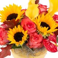 Aranjament de Floarea soarelui, Cale, Cală, Galbene, Trandafiri, Portocaliu, Anthurium. Roșu, Verde 3
