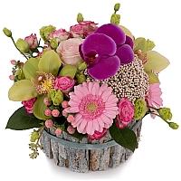 Aranjament din Gerbera, Cymbidium, Orhidee, Floare de orez, Lisianthus, Minirosa, Ciclam, Hypericum 2