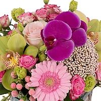 Aranjament din Gerbera, Cymbidium, Orhidee, Floare de orez, Lisianthus, Minirosa, Ciclam, Hypericum 3