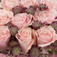 Aranjament din trandafiri  4