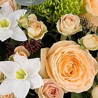 Aranjament din trandafiri, miniroze, crizanteme, eucharis grandiflora, schimia, cutie, rosie 4