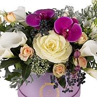 Aranjament floral cu miniroze, cale, ornitogalum, trahelium, viburnum, hypericum sipPhalaenopsis 3