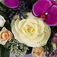 Aranjament floral cu miniroze, cale, ornitogalum, trahelium, viburnum, hypericum sipPhalaenopsis 4