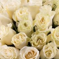 Buchet de 101 trandafiri albi  4