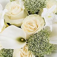 Buchet de 11, Trandafiri, Albi, 10, Cale, Albe. Cală, 2, Eucharis, Grandiflora, Verdeață 4
