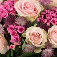 Buchet de 15, Trandafiri, Roz, 10, Bouvardia, Roz, Astrantia, Grena, Verdeață 4