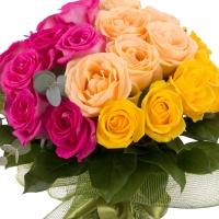 Buchet de 27 Trandafiri tricolori 3