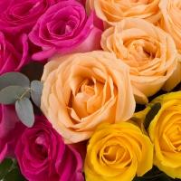 Buchet de 27 Trandafiri tricolori 4