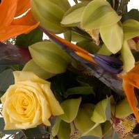 Buchet de 5, Strelitzia, Streliția, 1, Cymbidium, Verde, Orhidee, Verzi, 3, Trandafiri, Galbeni 4