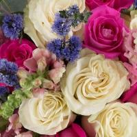Buchet de 7, Trandafiri, Albi, 6, Trandafiri, Ciclam, 8, Antirrhinum, Roz, 6, Floare de mentă, Verde 4