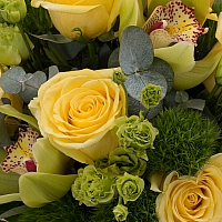 Buchet de 9, Trandafiri, Galbeni, 8, Green trick, 5, Lisianthus, Verde, Verzi, 1, Cymbidium, Orhidee 4