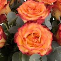 Buchet de 9 Trandafiri portocalii 4