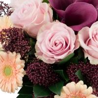 Buchet de Gerbera, Crem, Trandafiri, Crem, Cale, Mov, Matthiola, Roz, Schimia, Astrantia, Grena 4