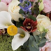 Buchet de Trandafiri, Cale, Antirrhinum, Lisianthus, Ami, Cymbidium, Orhidee, Veronica, Craspedia 4
