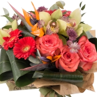 Buchet de Trandafiri, Corai, Cymbidium, Orhidee, Gerbera, Strelitzia, Streliţia, Astrantia, Verdeață 3