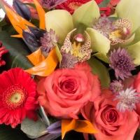 Buchet de Trandafiri, Corai, Cymbidium, Orhidee, Gerbera, Strelitzia, Streliţia, Astrantia, Verdeață 4