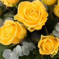 Buchet din 15 Trandafiri Galbeni 4