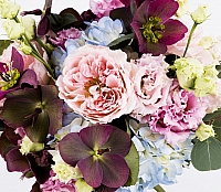 Buchet Mireasa/Nasa hortensie,trandafiri si heleborus 4