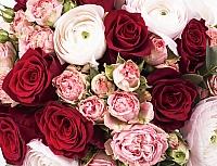 Buchet Mireasa/Nasa ranunculus si trandafiri rosii 4