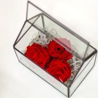 Casa trandafirilor criogenati 3
