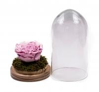 Trandafir criogenat roz în cupolă de sticlă. Trandafir nemuritor, preț accesibil. Cadou floral unic. Comandă online trandafir criogenat cupola sticla. 3