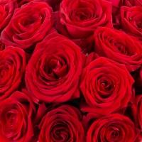 Cutie cu 27 de trandafiri 4