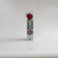 Cutie trandafir 2
