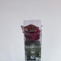 Cutie trandafir 4