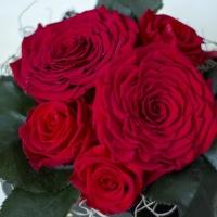 Cutie Trandafiri rosii criogenati 4