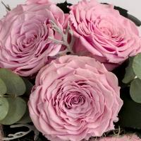 Cutiuta roz 3