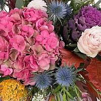 Hortensia, Brasica, Eringyum, Dalii, Leucospermum, Trandafiri, Lisianthus, Veronica, Astrantia 4