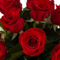 Ofertă, Dragobete 15 Trandafiri Roșii 5