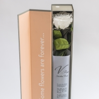 Trandafir alb elegant 3