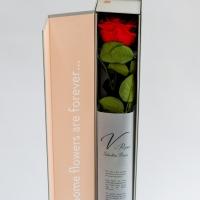 Trandafir rosu elegant 3