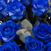 Trandafiri albastri, trandafiri maiastri. Cadou floral inedit.  4