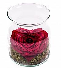 Vas Sticla Trandafir Criogenat Rosu Inima 3