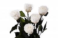 5 Trandafiri Criogenati Albi in vas de sticla 2