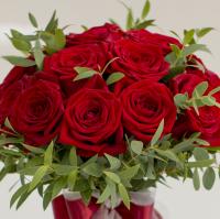 Trandafir-zurliu 4