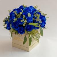 Cutie-albastra 3