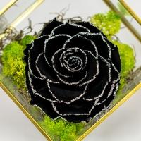 Trandafir-negru-criogenat  3