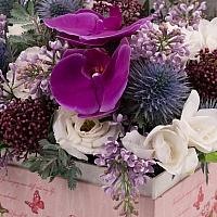 Aranjament de Liliac, Frezii, Alb, Frezie, Eryngium, Lisianthus, Schimia, Phalaenopsis, Cutie, Cufăr 4