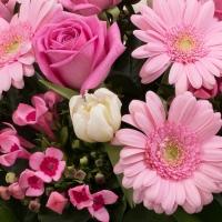 Buchet 5, Trandafiri, Roz, Trandafir, 7, Gerbera, 5, Bouvardia, 10, Lalele, Albe, Lalea, Verdeață 3